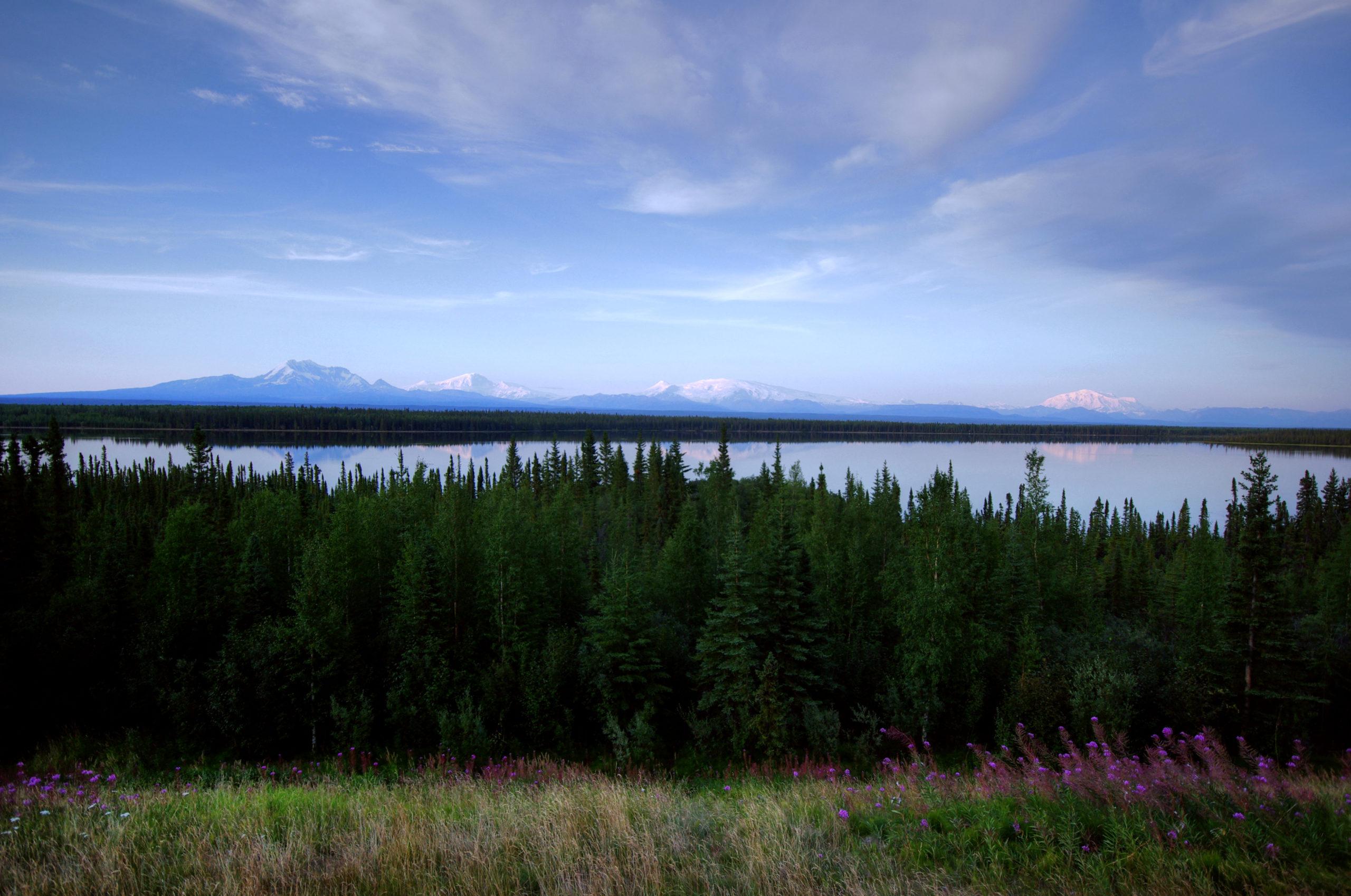 Willow Lake, Wrangell Mountains