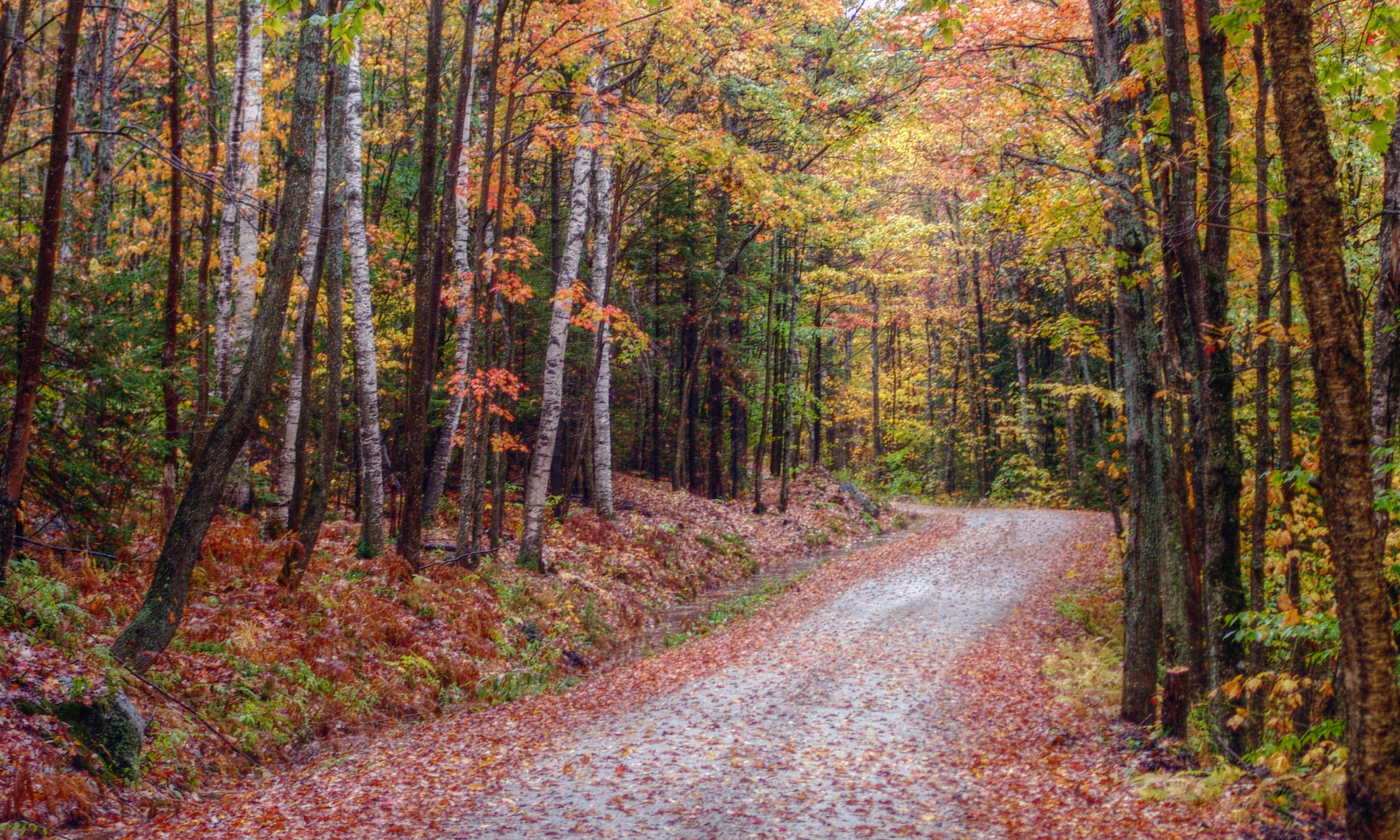 Vermont Backroads Autumn